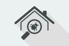 pest identification services