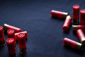 firearm and shotgun license